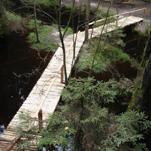 Povalový chodník, Vlčí rokle - Adršpašsko-teplické skály, rekonstrukce 3