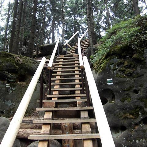 Dřevěný chodník 2