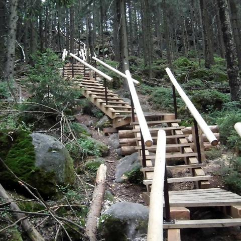 Dřevěný chodník 3