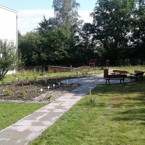 Výsadba bylinkové a ovocné zahrady u ZŠ - Náchod