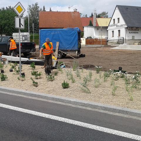 Výsadba městské zeleně v Náchodě