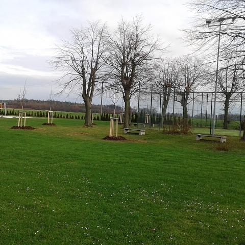 Úprava parku - výsadba stromků - Brachov